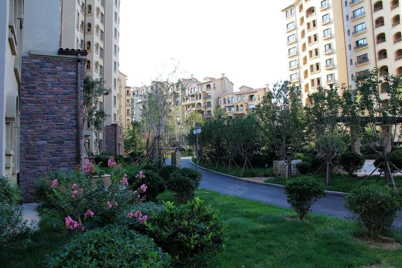 青岛中海·玫瑰庭院