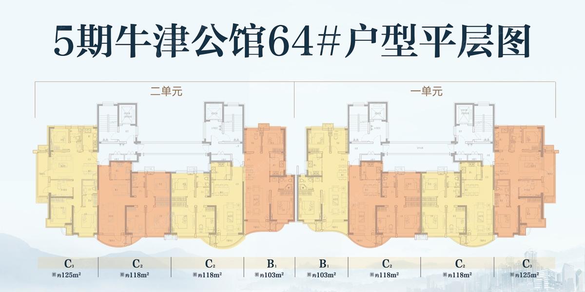 万达·维多利亚湾5期64号楼户型平面图