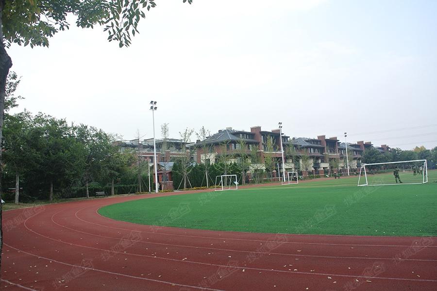 华地仟佰墅周边配套-白沙河运动公园-青岛搜狐焦点网
