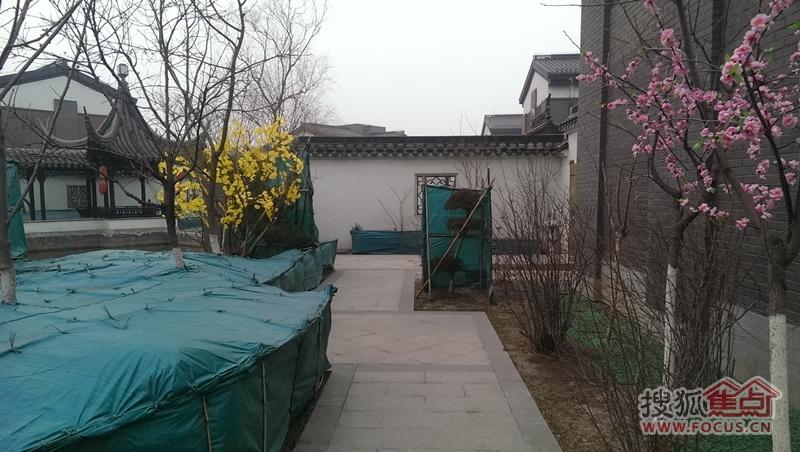 宝安江南城别墅私家庭院实景图(2014-3)