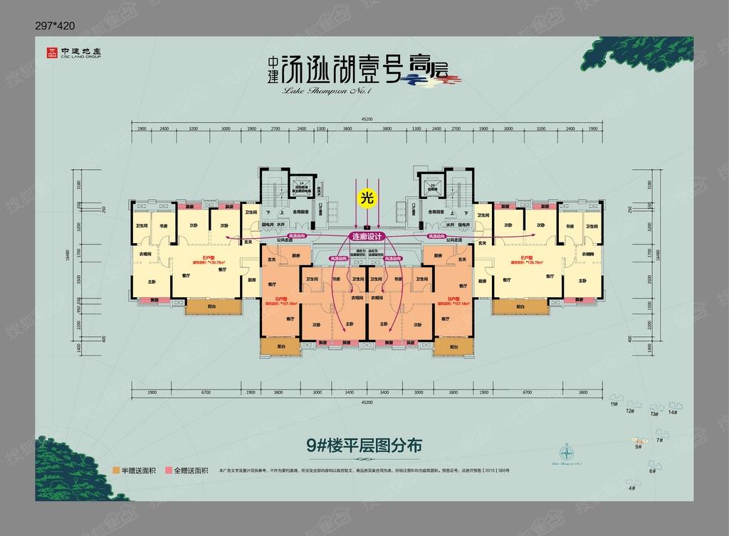 中建汤逊湖壹号高层楼层平面图-9#号楼